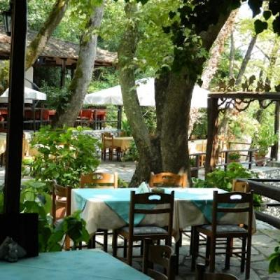 Restaurant Under From Trees